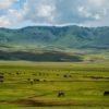 Ngorongoro-crater-tanzania