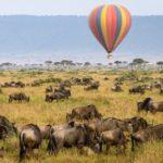 Masai-Mara-Balloon