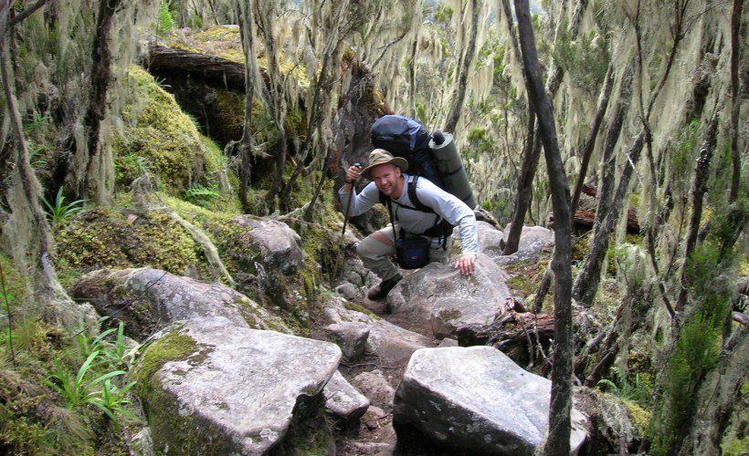 Kilimanjaro_Umbwe_route