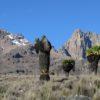 Mount-Kenya chogoria