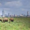 Nairobi Natinaonal Park
