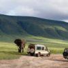 Ngorongoro_safaris