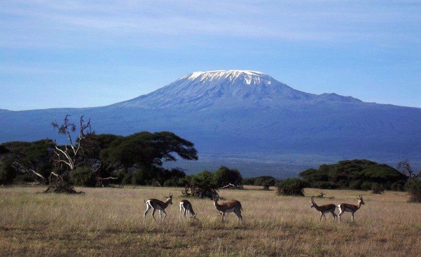 amboseli-safaris